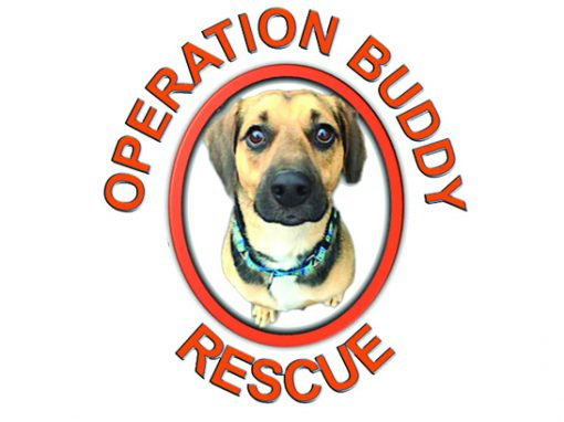 Operation Buddy Rescue